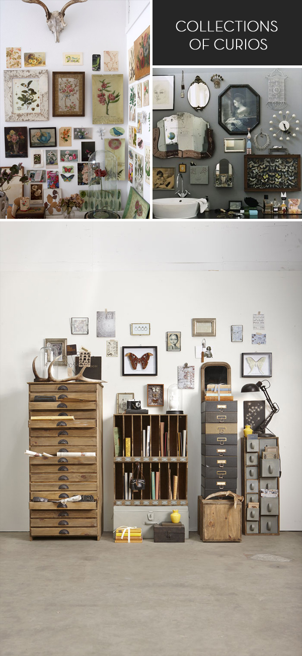 Collections of curios